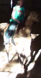 Rodeo redux 1